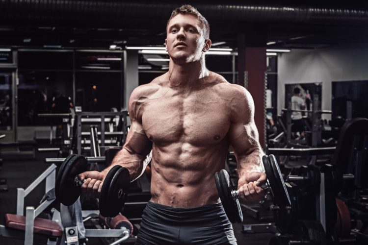muscular man on gym, Dumbbell Bicep Curl, recovery